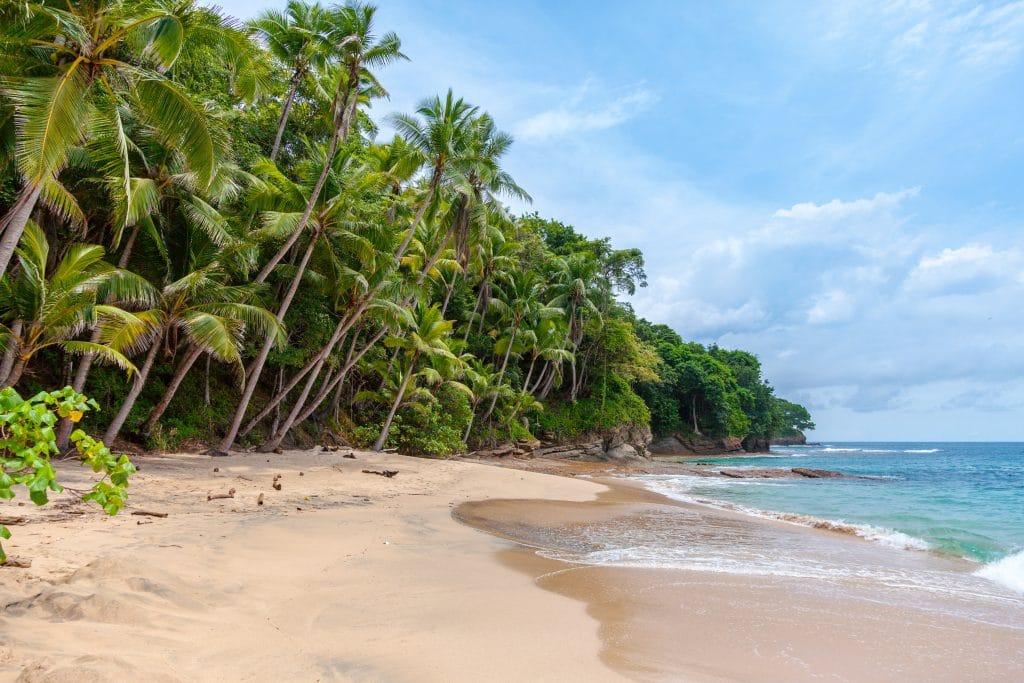 Cairns Summer